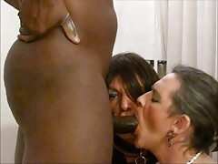 bitch she-creatures getting porked by Big black cock