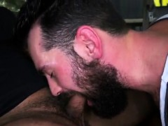 Bare cubs toying Fledgling Assfuck Fuckfest With A Guy Bear!
